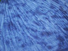 tie dye backdrop