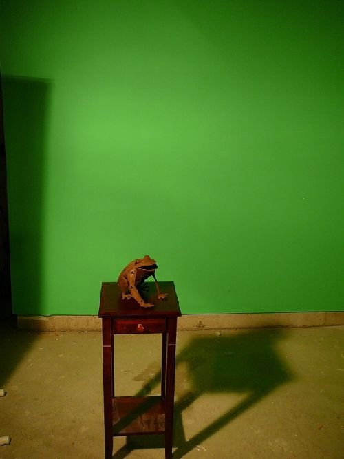 Chroma Key Solutions For The Diy Photographer