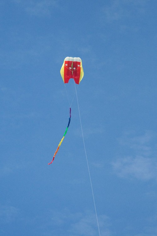 FlowForm 16 kite with 5m fuzzy tail