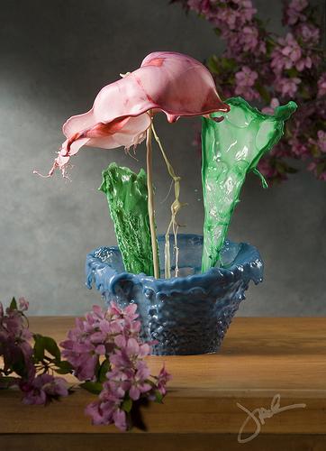 Flemish Fluid Floral