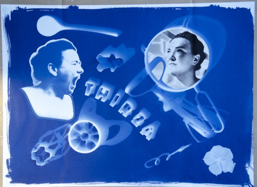 Make Your Own Photogram Cyanotype