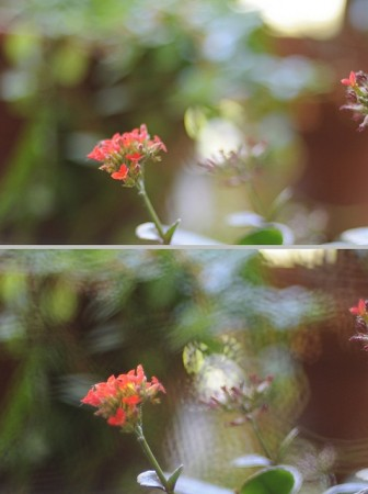 DIY soft focus filter