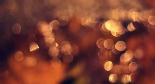 Can Bokeh Be Used for Watermarking Videos?