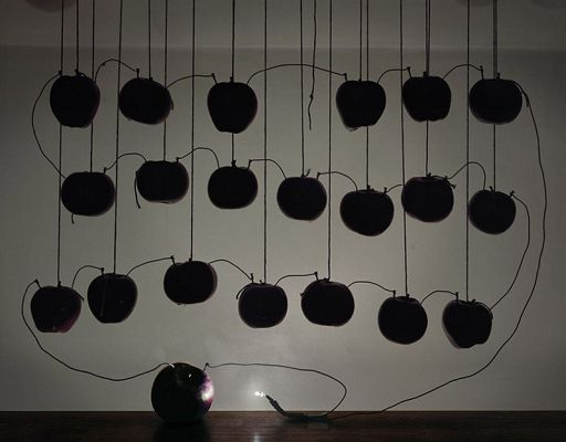 Photos Of Lights Powered By Fruits