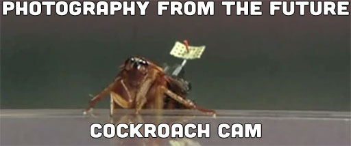 Photography From The Future: Cockroach Cam