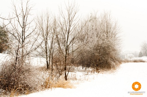15 Beginner Tips for Winter and Snow Photography