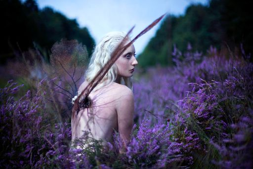 The Delicate And Beautiful World of Kirsty Mitchell's Wonderland
