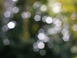 regular bokeh