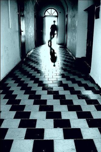 shadow_friends_07.jpg