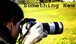 Something New - A Photography Project