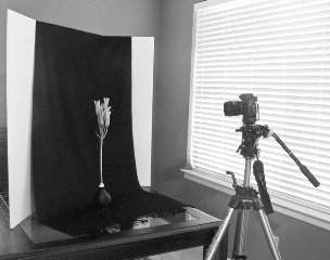 Home Photography - Ghetto Flower Setup