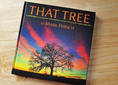 that-tree-by-mark-hirsch