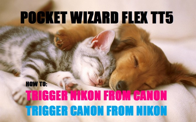how to trigger nikon from canon pocket wizard flex tt5 how to trigger canon from nikon pocket wizard flex tt5 tutorial jp danko toronto commercial photographer