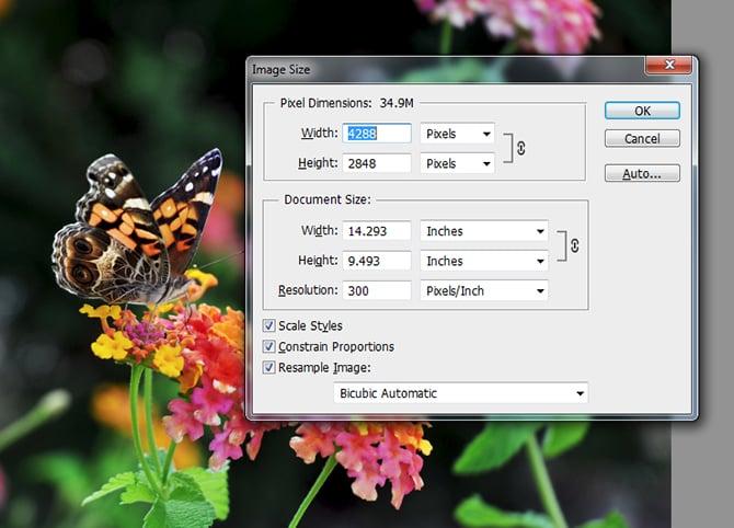 resize-images-diyphotography-002