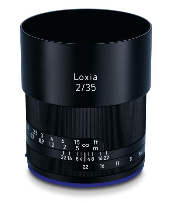 loxia-04