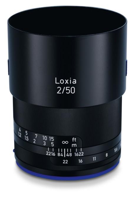 loxia-09
