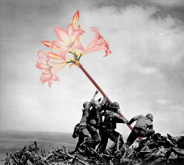 blick-guns-flowers-02