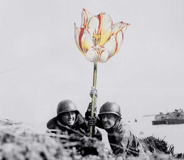 blick-guns-flowers-03