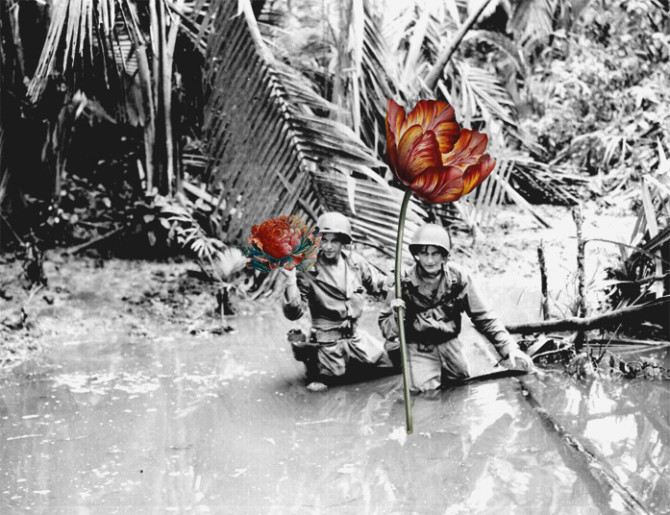 blick-guns-flowers-04