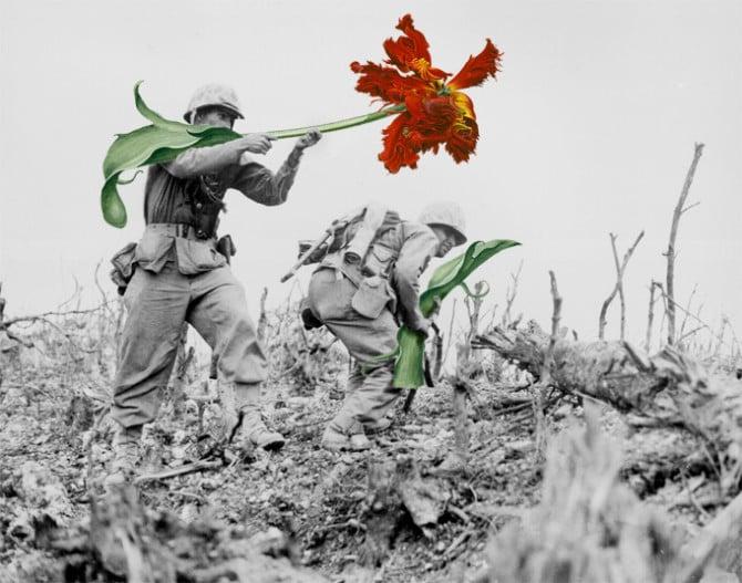 blick-guns-flowers-05
