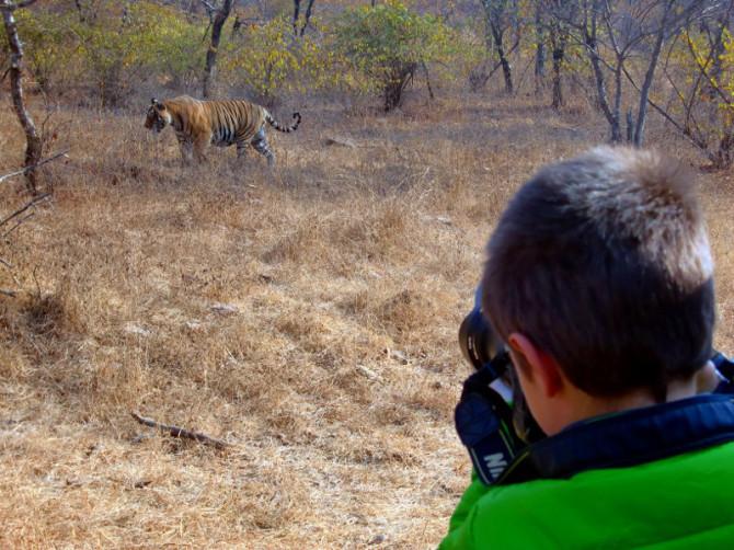 Carlos photographing tigers in India. (Photo courtesy of Eva Naval and Rodrigo Pérez)