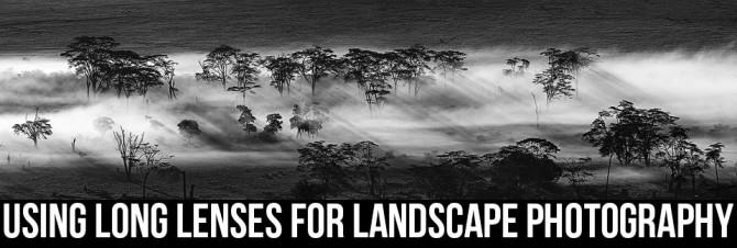 tomer-tele-landscape-05