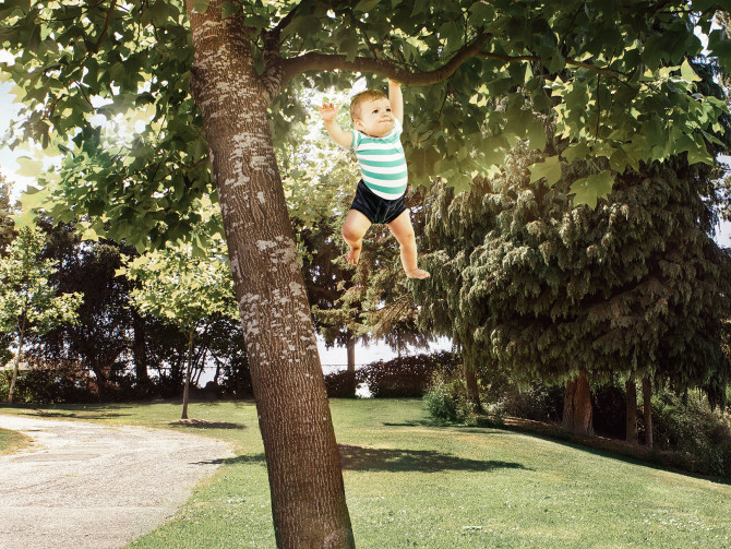 8 madd-stunt-tree-BrandonHillPhotos