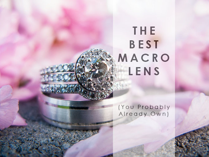 how to use an old point and shoot for amazing macro phtography