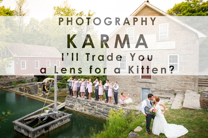 I'll trade you a lens for a kitten on craigslist