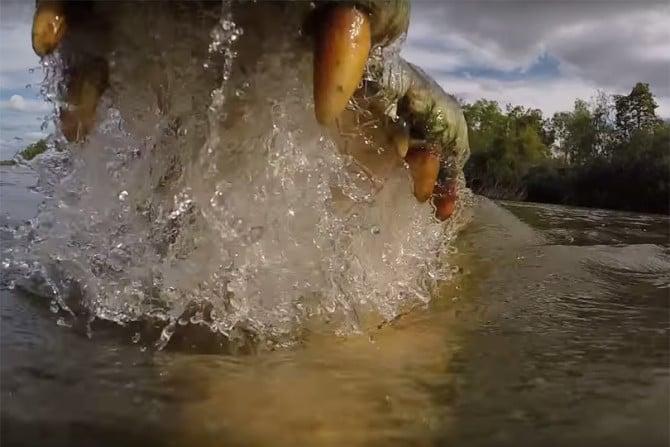 Croc_GoPro