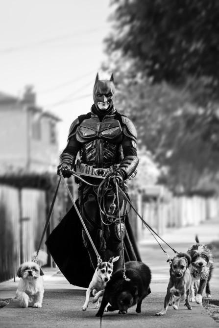 everyday-batman-05