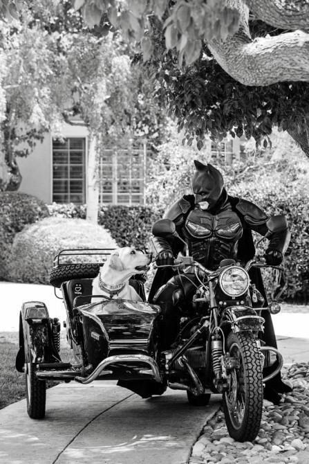 everyday-batman-06