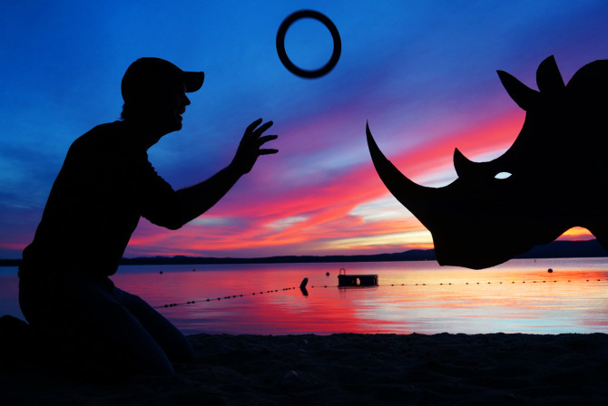 I can't think of a better way to wind down at the end of the day then with a little Rhino Ring Toss. For anyone interested: All you need is a rhinoceros and a ring and you're good to go.