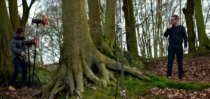 belgian-forest-12