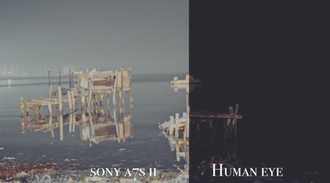 human-eye-a7sii-03