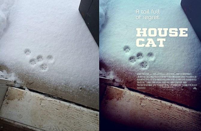 house_cat