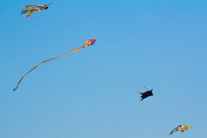 Kites again