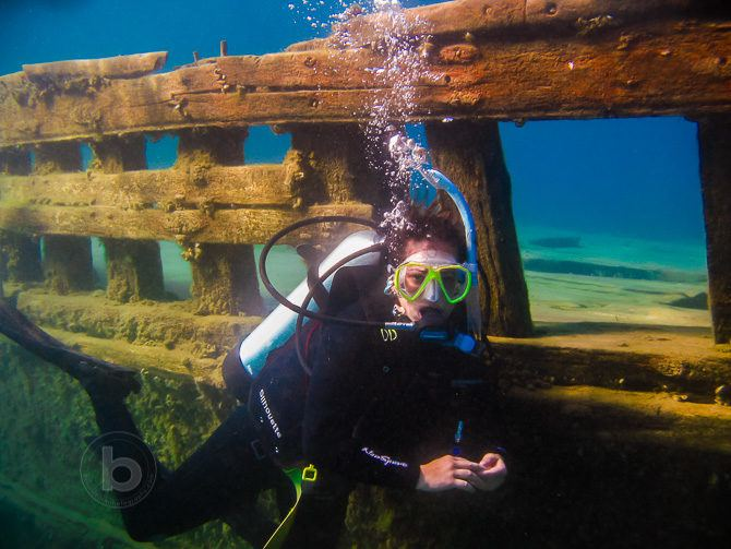 DSLR Underwater photography camera housing options