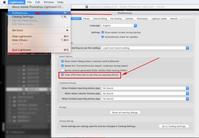 How to view JPEG files separately from RAW files in Lightroom.