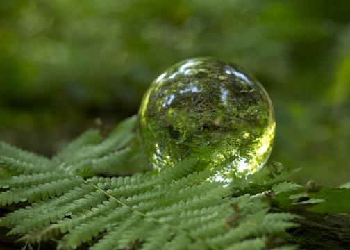 crystal-ball-photo-7