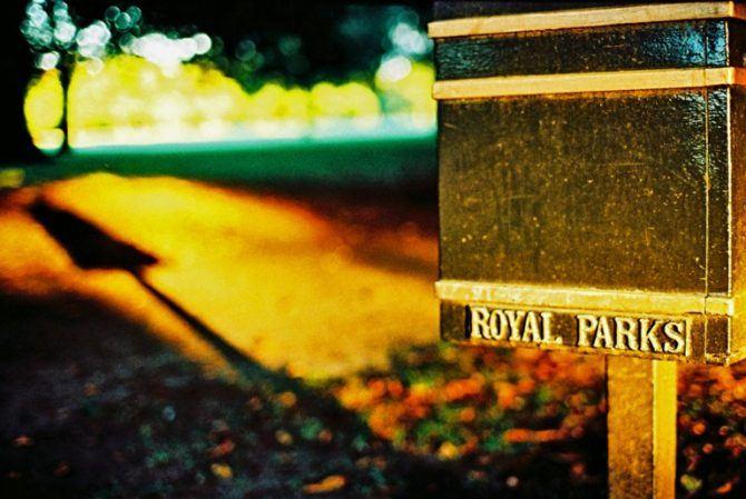 Greenwich Park, xpro Kodak Elite Chrome 100