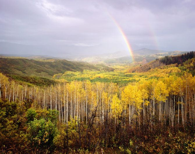 An evening storm rolls over the forest, causing the setting sun to cast a rainbow over the endless expanse of golden aspen that make up the Gunnison National Forest of Colorado. September 2014 Velvia 50 4x5, 75mm Super Angulon 2 seconds at f22, polarizing filter and 2 stop soft GND filter