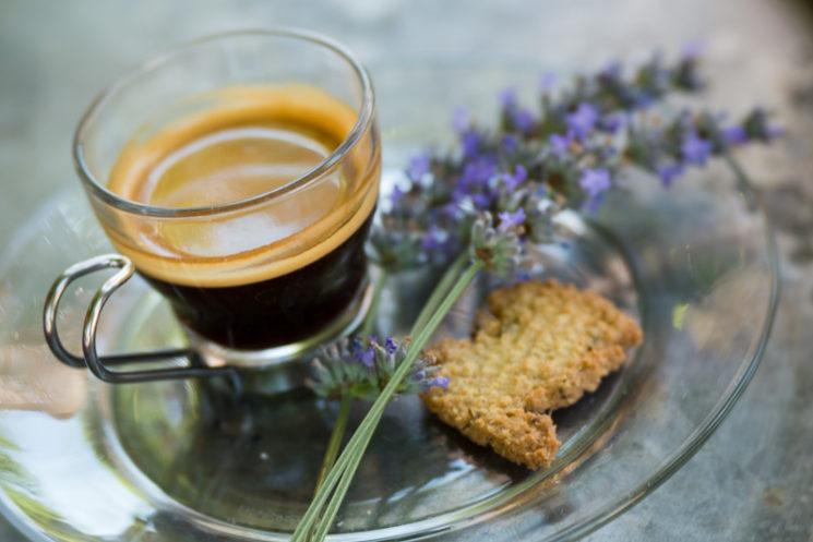 Lensbaby Velvet 85mm Review Nikon Mount - Espresso and Lavender